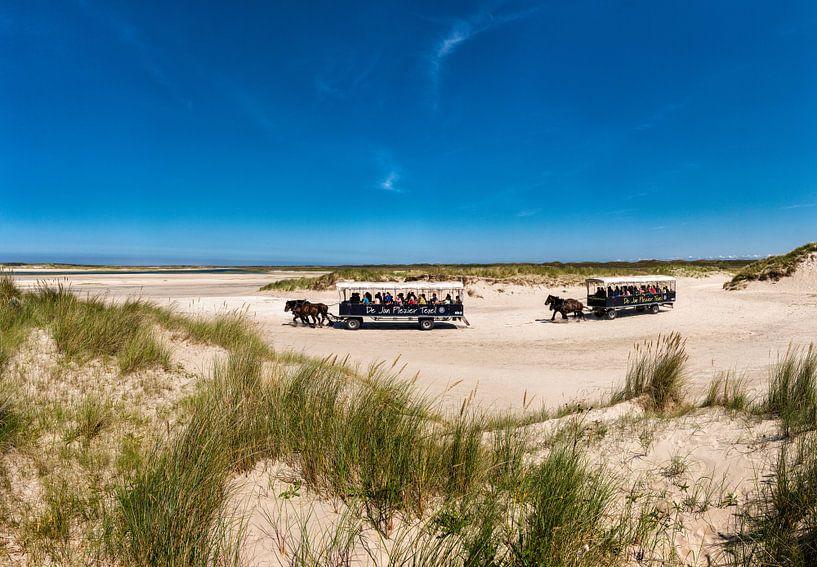 Nationaal Park Duinen van Texel, de Slufter, De Cocksdorp, Texel, Noord-Holland, Nederland van Rene van der Meer