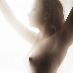 Female beauty 3 van Peter Mantel
