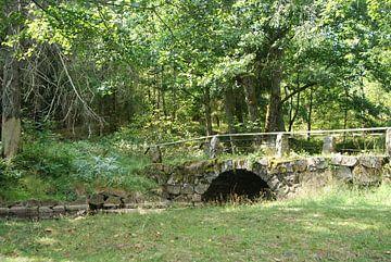 Historische brug van Annika van Zonneveld