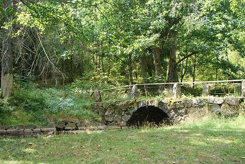 Historische brug