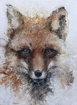 Fox von Peter van Loenhout