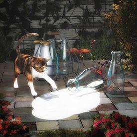 Katzen – Kätzchen, das Milch entdeckt von Jan Keteleer