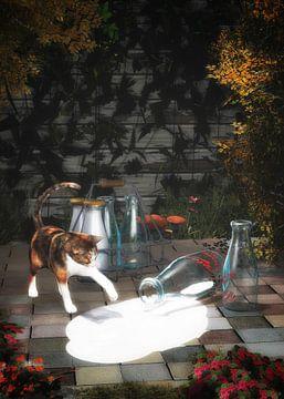 Katten – Kat die melk ontdekt