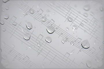 Regendruppels van Ralph Hoeberechts