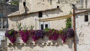 Bloemen in Italie sur Yvonne van der Meij