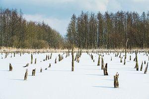 Winter in Holland van