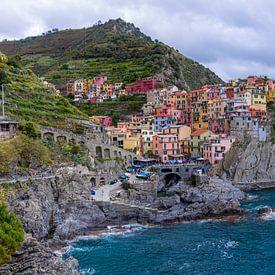 Blick über Manarola, Cinque Terre (Italien) von Martijn Mureau