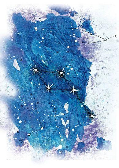 Constellation Dolphin van Larysa Golik