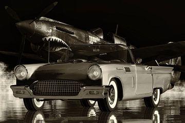 Ford Thunderbird familie sportwagen uit de vijftiger jaren van Jan Keteleer