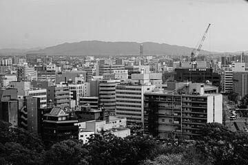 Japan kumamoto van Shurendly Baal