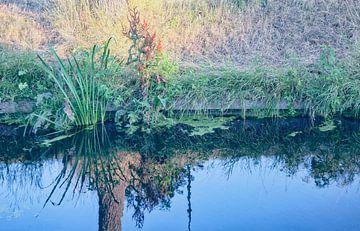 Ufer eines Grabens von Marijke van Loon