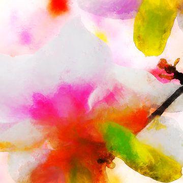 Spring impressions von Andreas Wemmje
