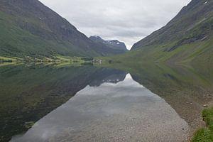 Reflectie in een meer in Noorwegen van