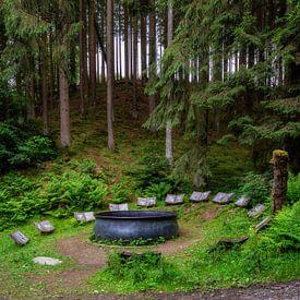 Der Hexenplatz nahe Oberkirchen. (Hoch) von Deimel Fotografie