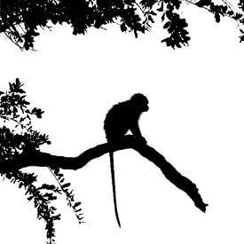 Silhouette des Affen von Richard Guijt