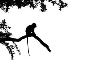 Silhouette du singe sur Richard Guijt