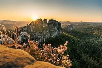 Sonnenstern am Schrammsteinfels von Christian Klös
