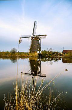 Windmühle in Kinderdijk von Consala van  der Griend