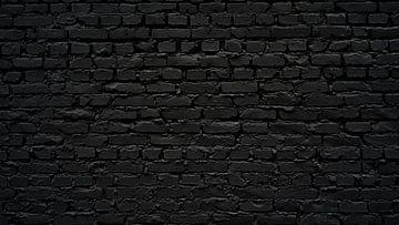 Schwarze Wand von Günter Albers