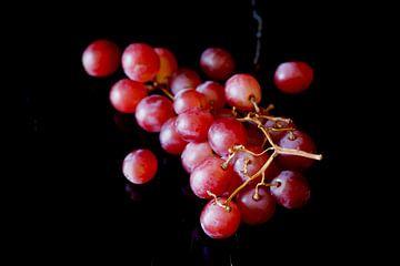 Druiven van Thomas Jäger
