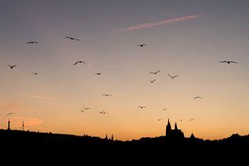 Zonsondergang in Praag van Evelyne Renske