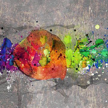 Kleuren explosie van Andreas Wemmje