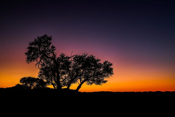 Schitterende zonsondergang en silhouette in de Namib Woestijn, Namibië