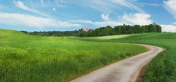 Weg in grüner Landschaft von Susanne Bauernfeind