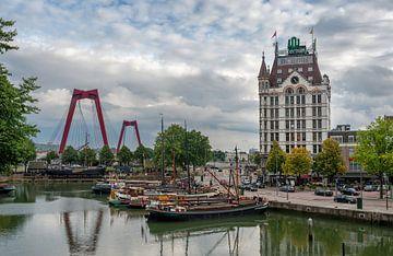 Rotterdam sur Lorena Cirstea