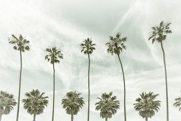 Vintage palmidylle van Melanie Viola