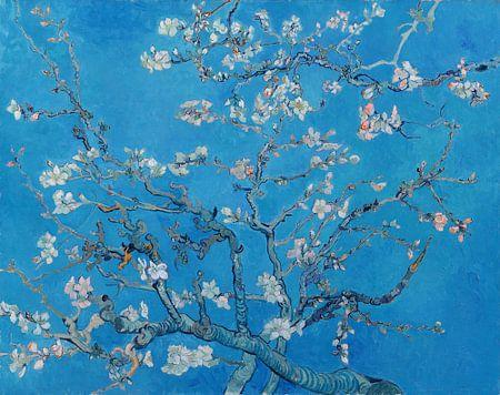 Amandelbloesem van Vincent van Gogh (Blauw)