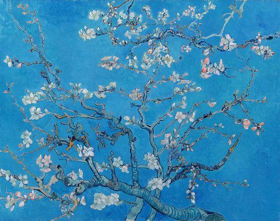 Amandelbloesem van Vincent van Gogh (Blauw) van Meesterlijcke Meesters