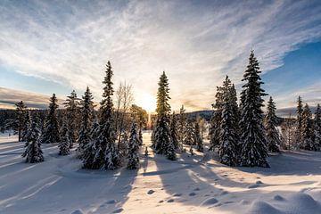 Zonsopkomst in Lappland // Lappland, Zweden van PHOTORIK