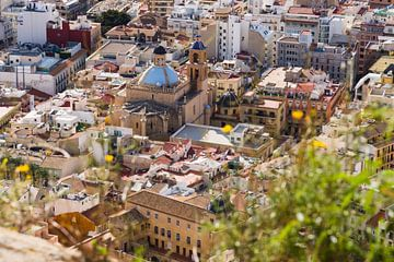 Stadsgezicht Alicante met de kathedraal van Paul van Putten