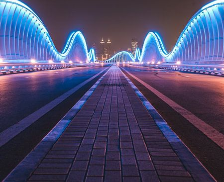 Meydan brug in Dubai von michael regeer