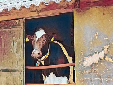 koe in de stal van Corrie Ruijer