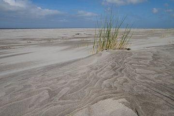 Het strand.. stil en verlaten van Tiny Hoving-Brands