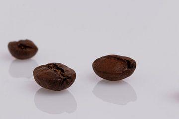 Kaffeebohne von Thomas Heitz