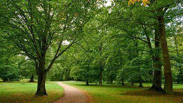 Park am Schloss Ludwigslust von Jenco van Zalk