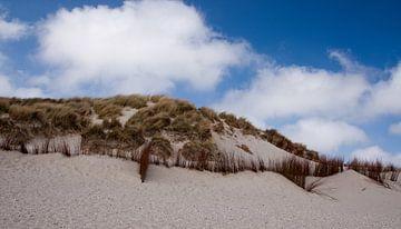 De duinen en een Hollandse lucht van