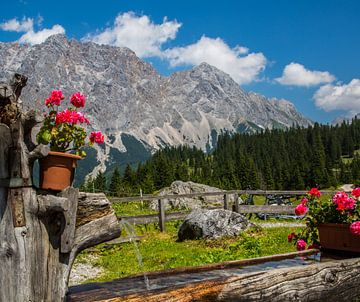 Alpenlandschaft von Peter Leenen