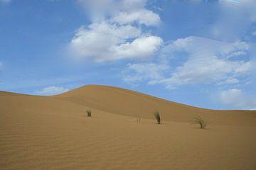 Marokko Sahara  von Gerrit  De Vries