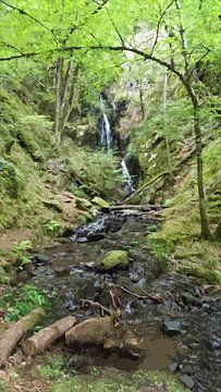 Waterval in bos van Danny jacobs