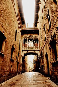 Barcelona / Spanje / Gothic Street van Sabrina Varao Carreiro