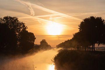 Linge im Morgengrauen von Tania Perneel