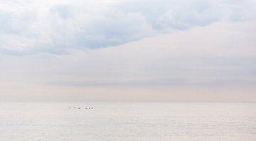 Meereslandschaft von Claudia van Zanten