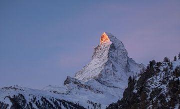 Das Matterhorn im ersten Tageslicht von Mark Thurman