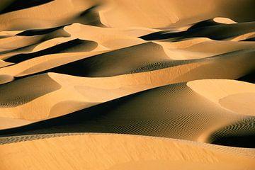 Sanddünen in der Sahara von Frans Lemmens