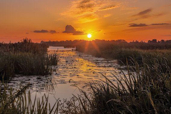 Zonsopkomst De Onlanden Drenthe