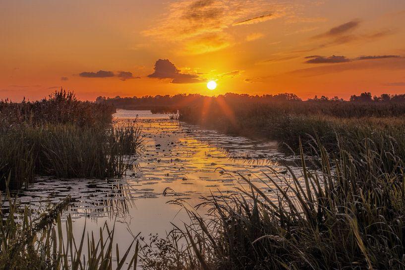 Zonsopkomst De Onlanden Drenthe van R Smallenbroek
